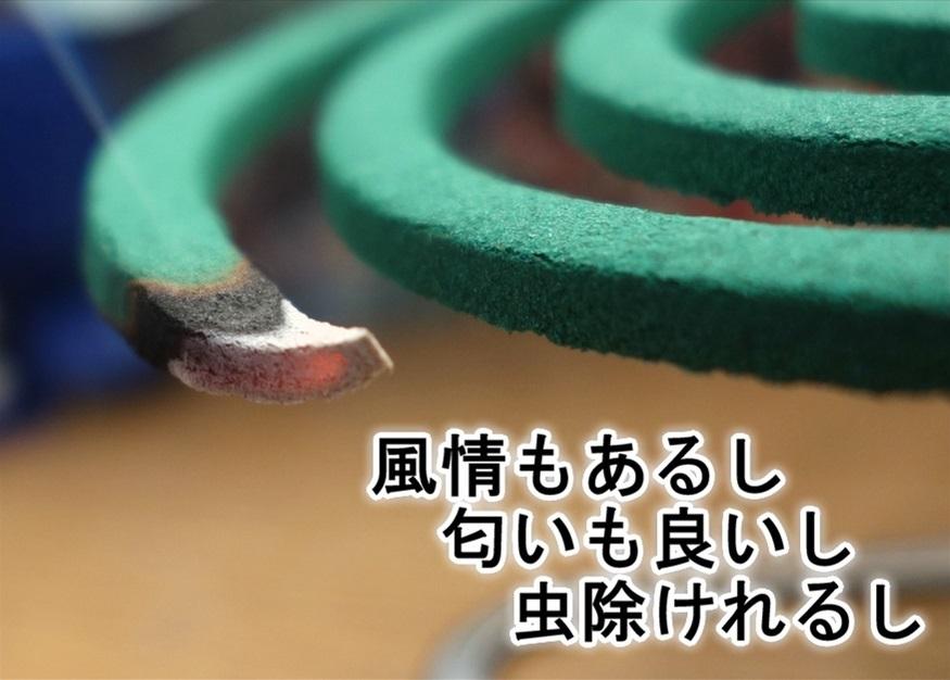 【ただの雑記】煙る!!香る!! DXカトリセンコウ_f0205396_19593151.jpg