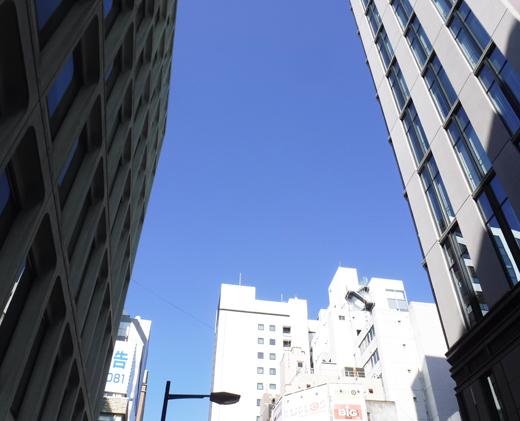 「第一回 懇話会人気作家セレクト展」展示風景(The exhibition landscape.)_e0224057_11392036.jpg