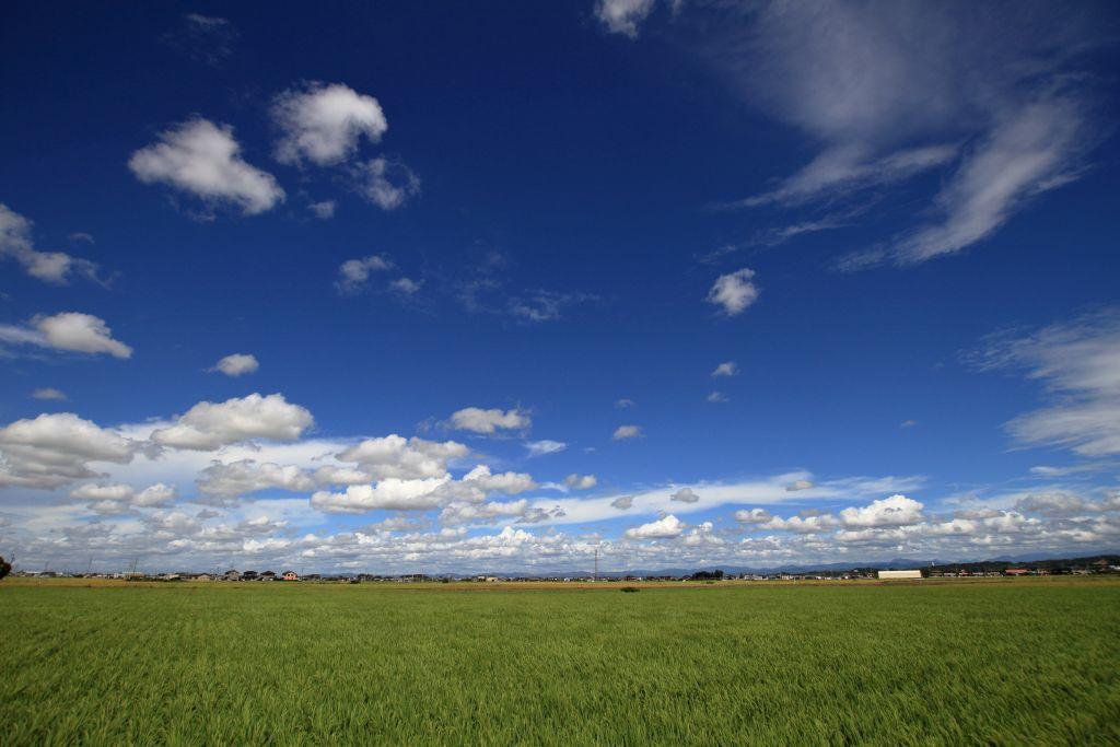 雲の船団_e0220163_16241257.jpg