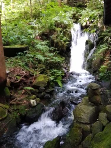 滝巡り_f0395164_20102225.jpg