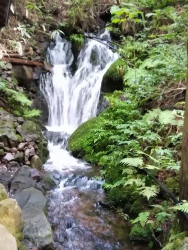 滝巡り_f0395164_20104292.jpg