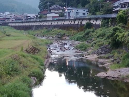2020/8/27    水位観測  (槻の木橋より)_b0111189_05462121.jpg