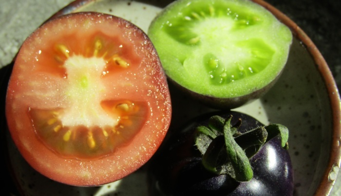 トマト いろいろ_b0287748_04383693.jpg