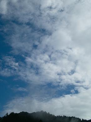 アポロ対サル・・・夕焼け空の虹_d0005250_1923493.jpg