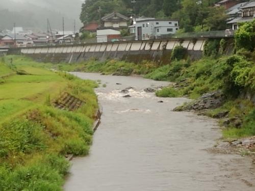 2020/8/28     水位観測  (槻の木橋より)_b0111189_06002871.jpg