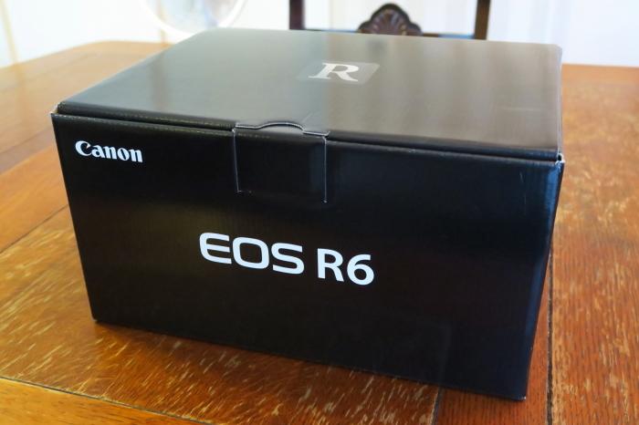 EOS R6投入_b0043304_18353739.jpg