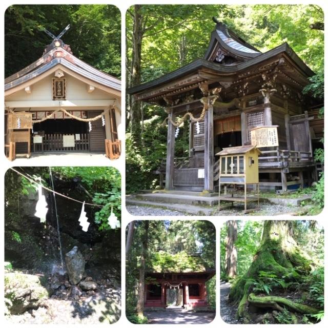 夏の戸隠神社へ_d0085018_19541190.jpg