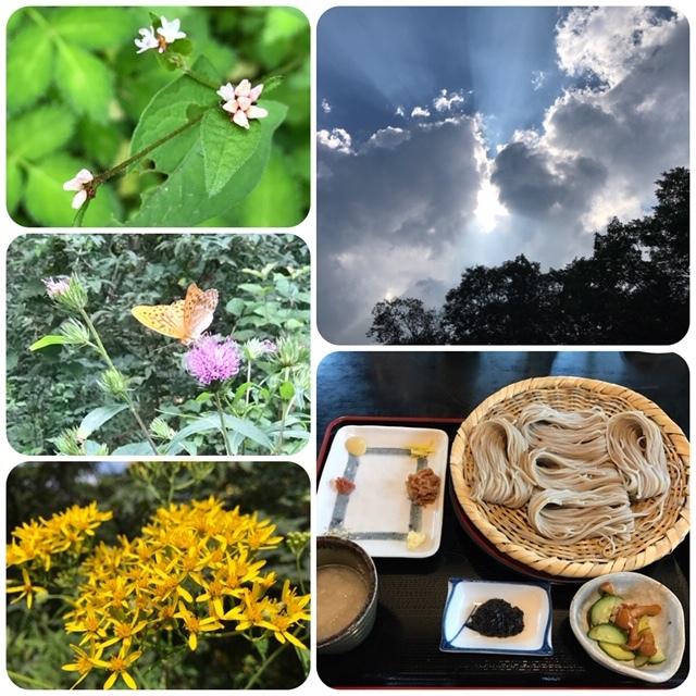 夏の戸隠神社へ_d0085018_19544819.jpg