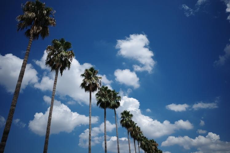 夏の青空_f0209122_17040933.jpg