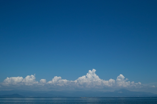 麒麟がくる、猿もくる・・・・夏空とびわ湖_d0005250_17493293.jpg