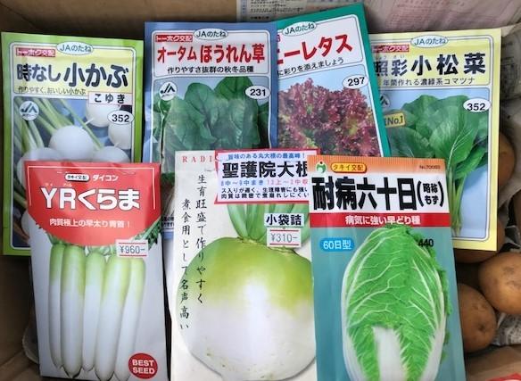 一気に秋ジャガ植え付け、大根など種蒔き8・31_c0014967_16264394.jpg