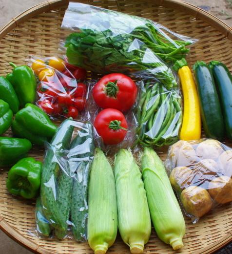 今週の野菜セット(9/1~9/5着)_c0110869_13014360.jpg