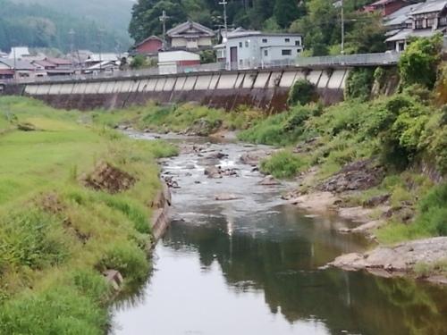 2020/8/31     水位観測  (槻の木橋より)_b0111189_05473603.jpg