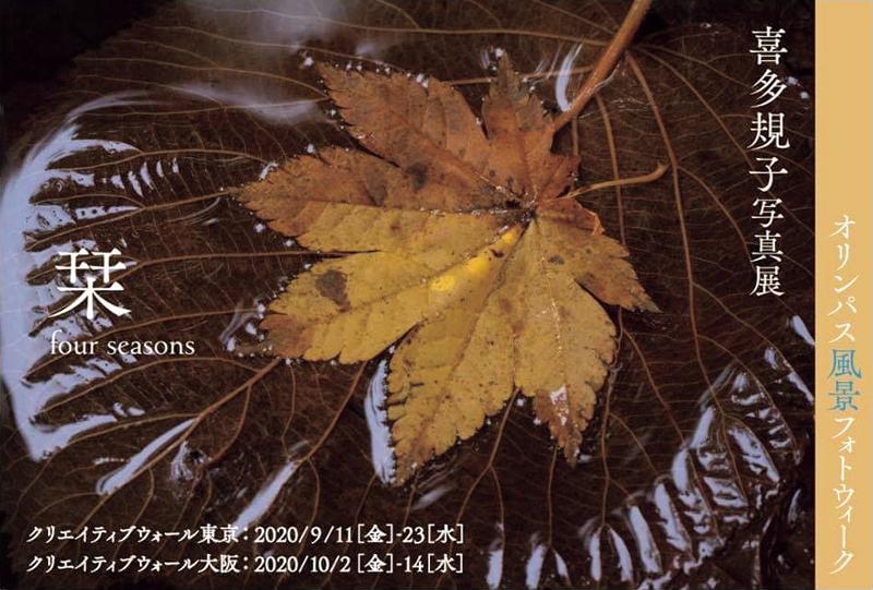 喜多規子「栞ーfour seasonsー」(東京・大阪)_c0142549_12373987.jpg