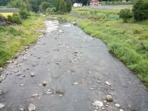 2020/9/1     水位観測  (槻の木橋より)_b0111189_05590240.jpg