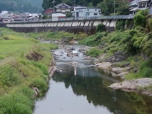 2020/9/1     水位観測  (槻の木橋より)_b0111189_05591524.jpg