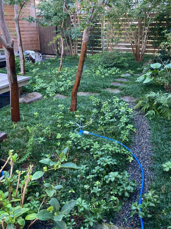 庭掃除と水撒きのアイデア商品_d0345090_18553688.jpg