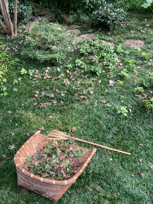 庭掃除と水撒きのアイデア商品_d0345090_19001834.jpg