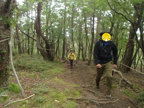2020 短い夏の山登り ~OちゃんSちゃんの大冒険 リベンジ編~_e0314407_18240517.jpg