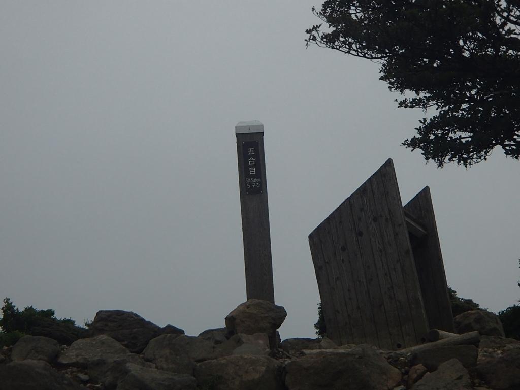 2020 短い夏の山登り ~OちゃんSちゃんの大冒険 リベンジ編~_e0314407_18291324.jpg