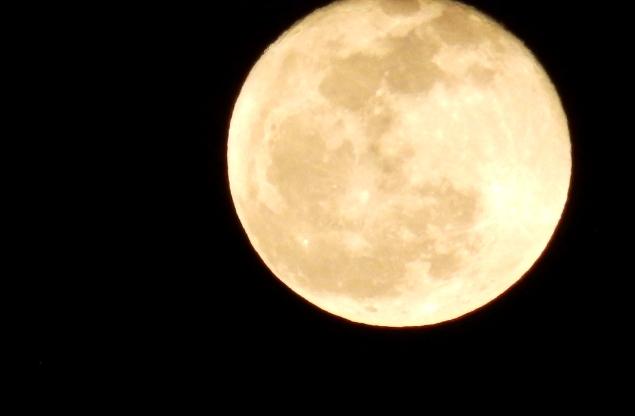今日は満月です。_c0054646_16154313.jpg