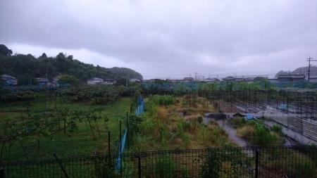 台風9号_a0082776_18140619.jpg