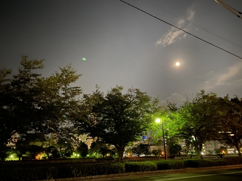 満月自力整体 in マアル_e0209781_09284018.jpeg