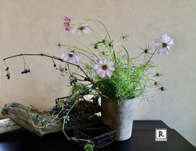 「お家にお花を飾る」9月 コスモスと野葡萄_c0128489_18032280.jpeg
