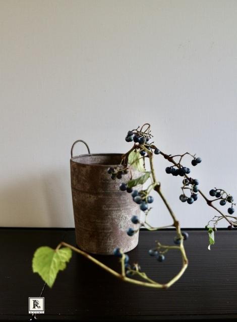 「お家にお花を飾る」9月 コスモスと野葡萄_c0128489_18064658.jpeg