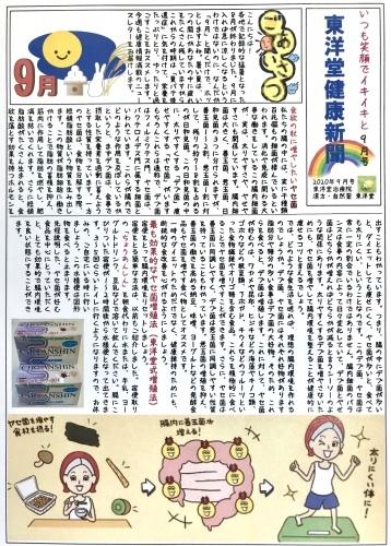 東洋堂新聞2020年9月号、本日より配布いたします。_d0142498_08541304.jpeg