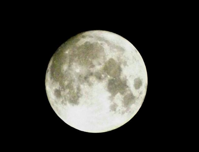 『vol.4124 昨夜は、満月でした』_e0040714_16344061.jpg