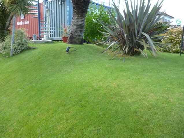 芝貼り工事も太田ガーデンフローにお任せ♬ 今日は芝刈り!!_e0361918_16334971.jpg