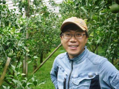 デコポン(肥後ポン) 果実を大きく成長させる匠の水管理と来年のための夏芽の話!前編_a0254656_18355556.jpg