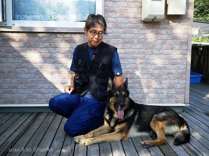 警察犬と指導手の嘱託書が届いた_f0067179_15255448.jpg