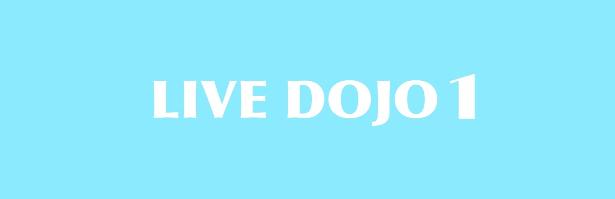 LIVE DOJO 1_d0180381_22412989.jpeg