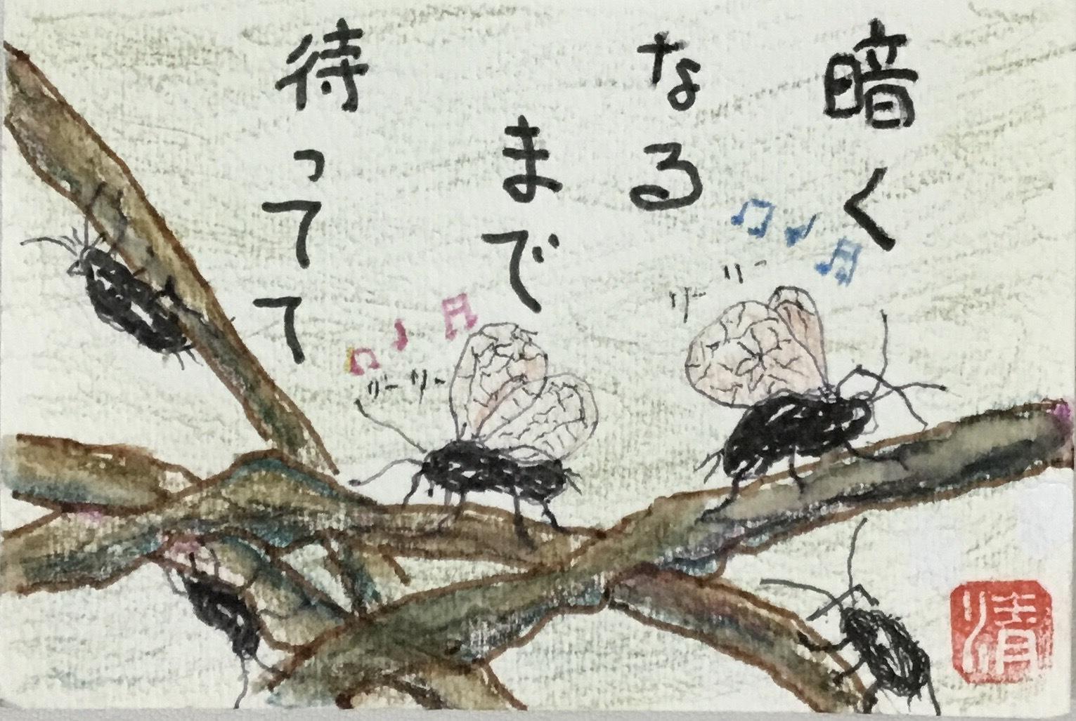 鈴虫と酔芙蓉(スイフヨウ)_e0281793_22500445.jpg