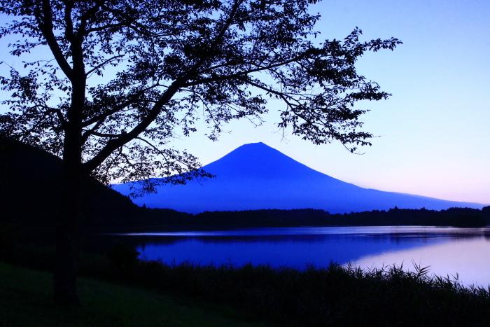 令和2年8月の富士(15) 田貫湖の日の出の富士 _e0344396_22025915.jpg