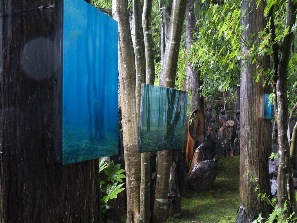 「森の中のアート写真展」開催のお知らせ_b0074098_19360115.jpg