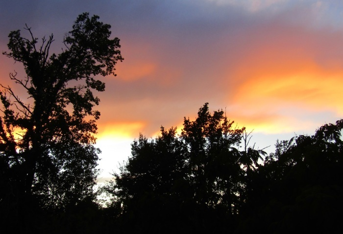 秋の夕暮れ_b0287748_00412658.jpg