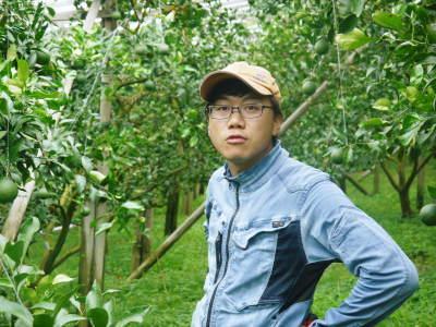 デコポン(肥後ポン) 果実を大きく成長させる匠の水管理と来年のための夏芽の話!後編_a0254656_16405362.jpg