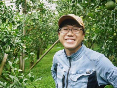デコポン(肥後ポン) 果実を大きく成長させる匠の水管理と来年のための夏芽の話!後編_a0254656_17010779.jpg