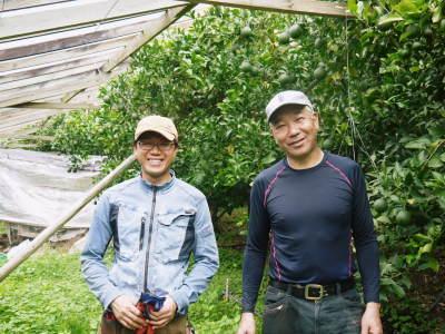 デコポン(肥後ポン) 果実を大きく成長させる匠の水管理と来年のための夏芽の話!後編_a0254656_17080597.jpg