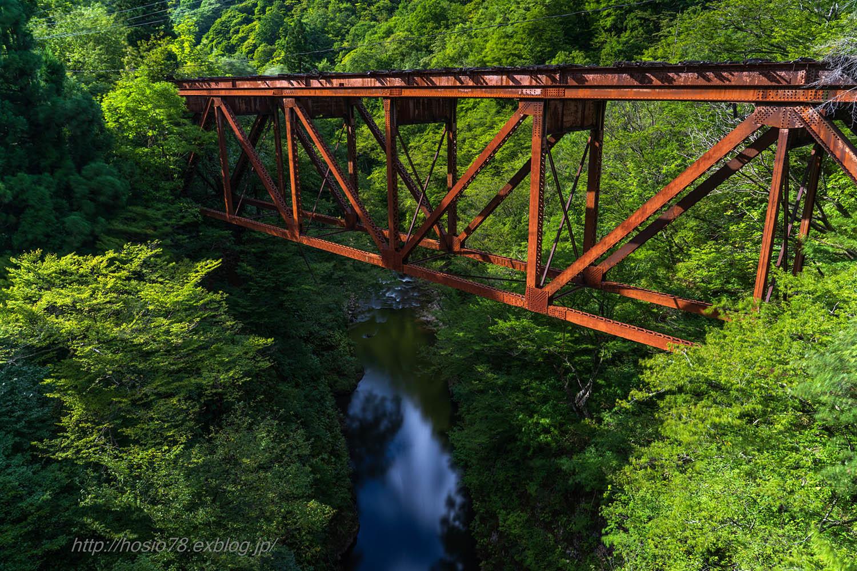 廃鉄橋のある風景_e0214470_09574767.jpg