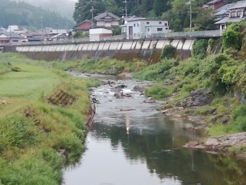 2020/9/4     水位観測  (槻の木橋より)_b0111189_05415381.jpg
