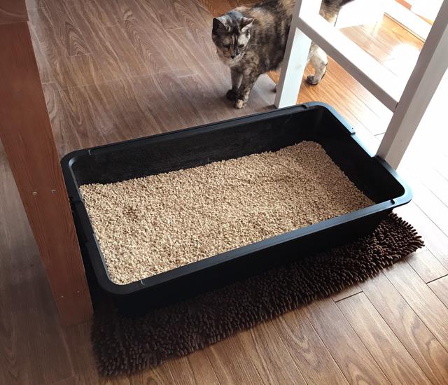 【猫の室内飼いの工夫】巨大猫トイレ2:自作の大きい猫トイレ_a0233917_271929.jpg