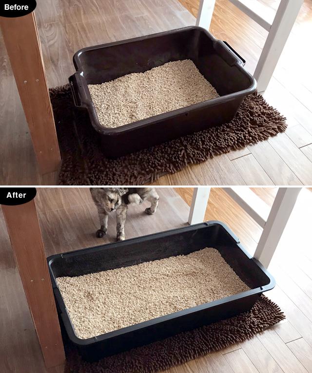 【猫の室内飼いの工夫】巨大猫トイレ2:自作の大きい猫トイレ_a0233917_27995.jpg