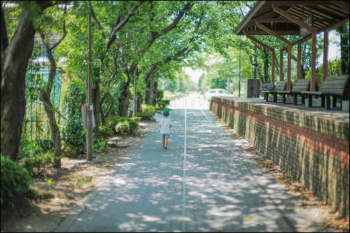 scene1827:人生史上最高の夏休み_e0253132_15125645.jpg