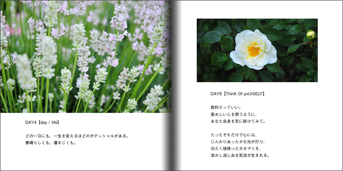 【オーダー承り〼】写真とことばの本『あなたの物語をはじめる』Maki SAEGUSA_d0018646_20054017.jpg