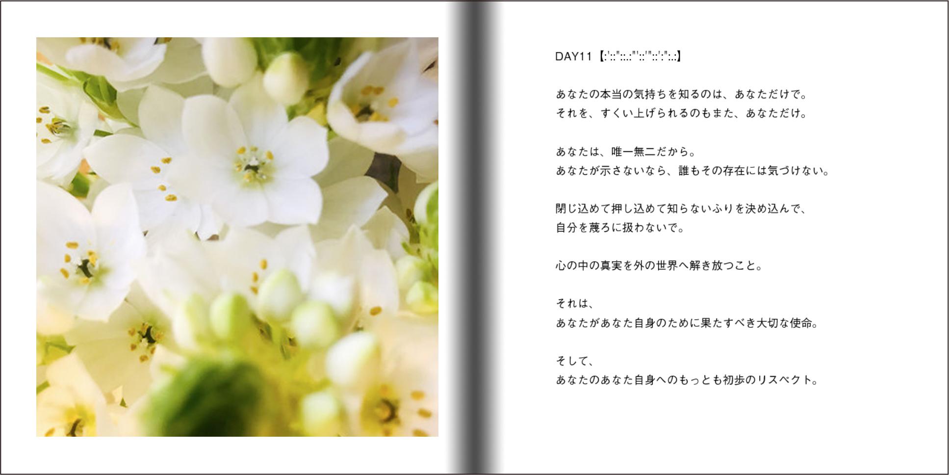 【オーダー承り〼】写真とことばの本『あなたの物語をはじめる』Maki SAEGUSA_d0018646_20175567.jpg