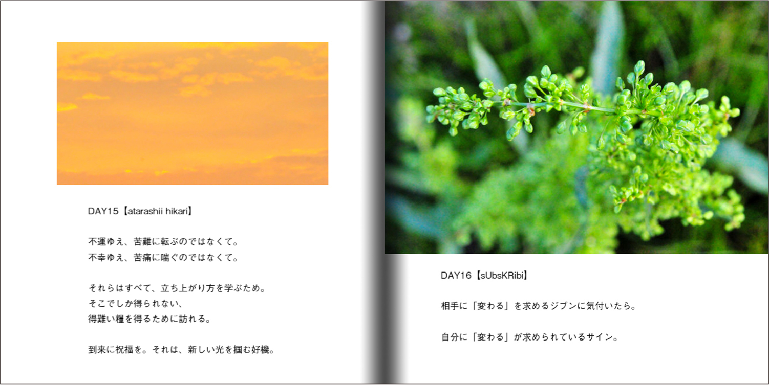【オーダー承り〼】写真とことばの本『あなたの物語をはじめる』Maki SAEGUSA_d0018646_20214829.jpg